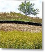 Growing Above The Stone Fence Metal Print