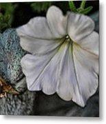 Grundgy Petunia Metal Print