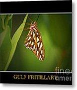 Gulf Fritillary 2 Metal Print