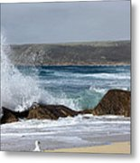 Gull On The Sand Metal Print