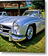 Gullwing Metal Print