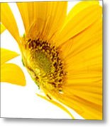 Half Yellow Gerbera Metal Print