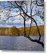 Hall Lake In Autumn No 0118 Metal Print