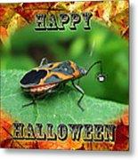 Halloween Greeting Card - Box Elder Bug Metal Print