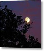 Halloween Moon 2009 Metal Print