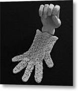 Hand And Glove Metal Print