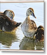 Hanging With The Buds Metal Print