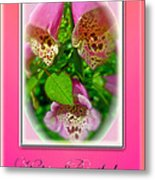Happy Birthday Card - Foxgloves Metal Print