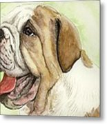 Happy Bulldog Metal Print
