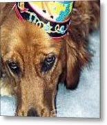 Happy Happy Birthday Buddy Metal Print
