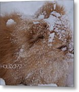 Happy Holidays Christmas Card Metal Print by Joanne Smoley