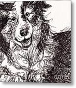 Happy The Boarder Collie Metal Print