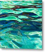 Harp Seal Abstract Metal Print