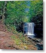 Harrison Wright Falls - Summertime Metal Print