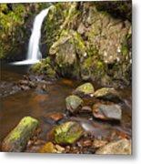 Harthope Linn, Harthope Valley, Northumberland National Park, Northumberland, England Metal Print