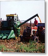 Harvesting Corn Metal Print