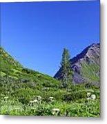Hatcher Pass Alaska Metal Print