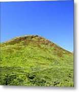 Hatcher Pass Metal Print