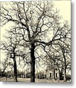 Haunted Homestead Metal Print