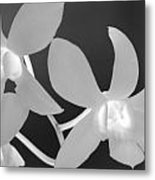 Hawaiian Floral Detail Metal Print