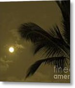 Hawaiian Palm Metal Print
