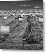 Hay Bales On A Farm In Alberta Metal Print