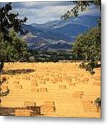 Hay Field With Mountain Background Metal Print