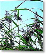 Hay In The Summer Metal Print