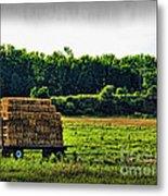 Hay Ride Metal Print