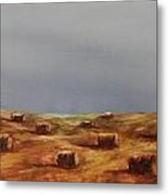 Hayfield Metal Print by Ruth Kamenev