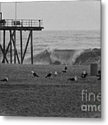 Hdr Black White Beach Beaches Ocean Sea Seaview Waves Pier Photos Pictures Photographs Photo Picture Metal Print