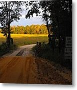 Heading To Sunlight Metal Print
