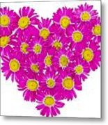 Heart From  Pink Daisies Metal Print
