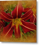 Heart Of The Lily Metal Print