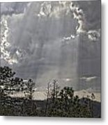 Heavenly Light Img 9204---2012 Metal Print