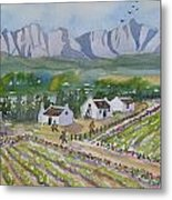 Helderberg Wine Estate Metal Print