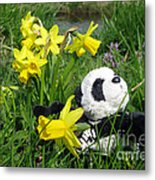 Hello Spring. Ginny From Travelling Pandas Series. Metal Print