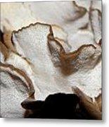 Hens Of The Woods Mushrooms Metal Print
