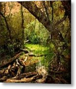 Here There Be Gnomes Metal Print