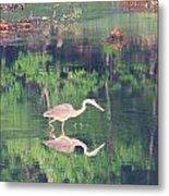 Heron Reflections1 Metal Print