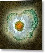 Herpes Virus Particle, Tem Metal Print by Hazel Appleton, Centre For Infectionshealth Protection Agency