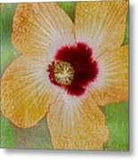 Hibiscus Gold And Red Metal Print