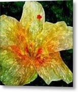Hibiscus Hiwc Metal Print