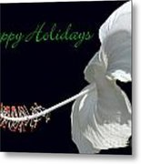 Hibiscus Holiday Card Metal Print