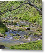 Hidden Creek Metal Print