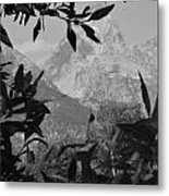 Hidden View Bw Metal Print