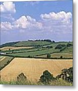 High Angle View Of Patchwork Fields Metal Print