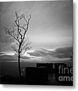 High On The Mountain Top Metal Print