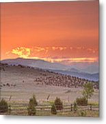 High Park Wildfire At Sunset Metal Print