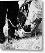 hiker hillwalker wearing boots waterproofs and rucksack in the highlands of Scotland UK Metal Print